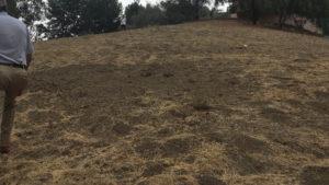 Woodland Hills, Land Development, SDG California