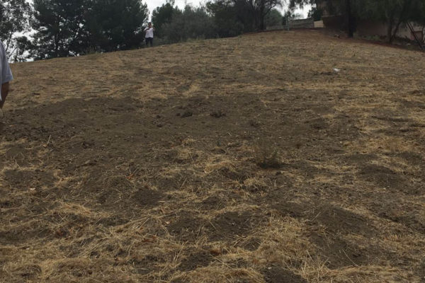 Land Development Woodland Hills